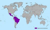 Countries and territories with active Zika virus transmission
